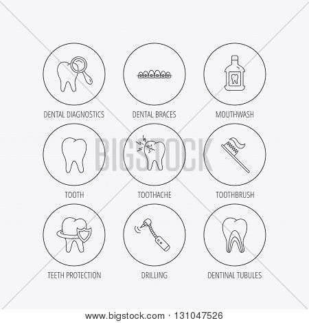 Tooth, dental braces and mouthwash icons. Diagnostics, toothbrush and toothache linear signs. Dentinal tubules, protection flat line icons. Linear colored in circle edge icons.