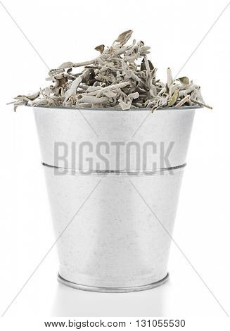 Metallic bucket full of sage tea plant isolated on white background.