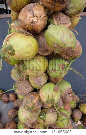 Pile of raw coconuts with bunches ,Thai fruit