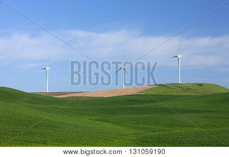 Clean energy wind turbines operating on the palouse region of eastern Washington.