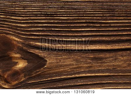 closeup background of wood texture