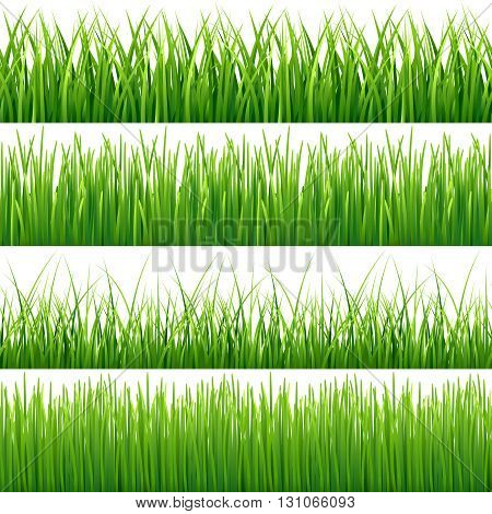Green seamless grass vector set. Green lawn grass and field grass seamless meadow pattern illustration