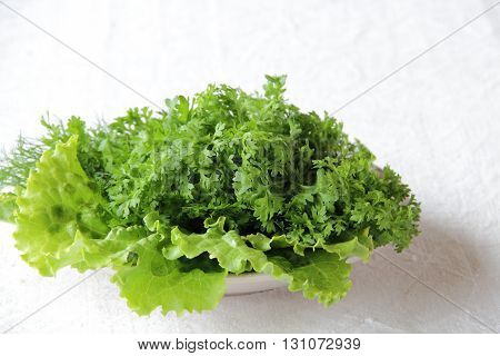 watercress and lettuce leaves on a plate on white background