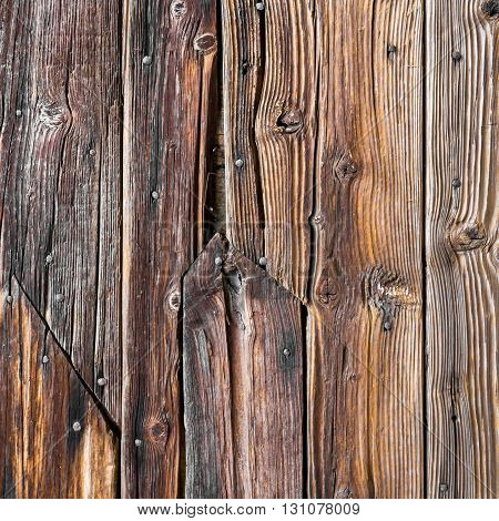 Old brown grunge wood with rust nails background