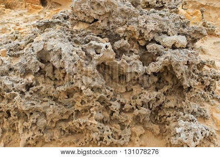 Closeup texture of eroded stone on coastal cliff at Petrified Forest Walk, Cape Bridgewater in Victoria, Australia