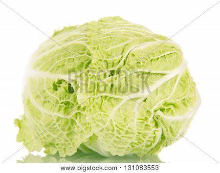 Fresh ripe chinese cabbage isolated on white background.
