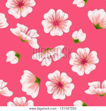 Vector seamless sakura pink pattern. Realistic floral asian design for invitation greeting wedding cards websites brochures booklets in japanese style. Hanami festival spring flowers