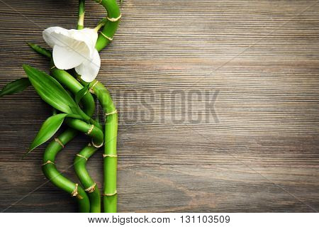 Bamboo branches and freesia on wooden background