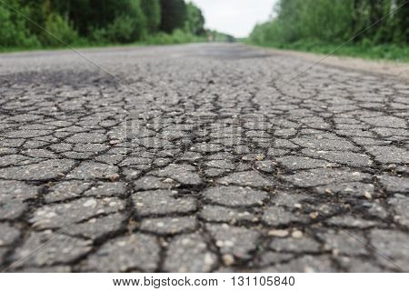 Pits of water on the asphalt road in the forest.