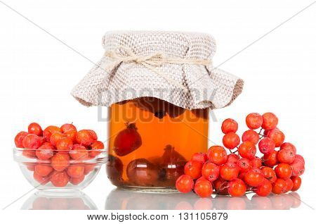 Rowan berries and drink Bank of rose hips isolated on a white background.