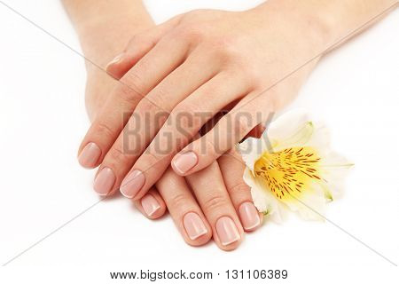 Woman hands with beautiful manicure and white lily isolated on white background