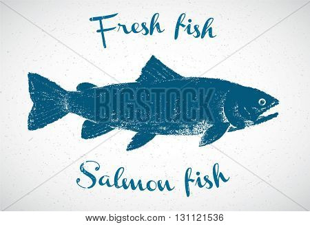 Silhouette of salmon in the graphic style. The fish silhouette is drawn hand-drawn.