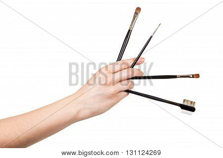 Cosmetic Makeup Brush in a female hand isolated on white background.