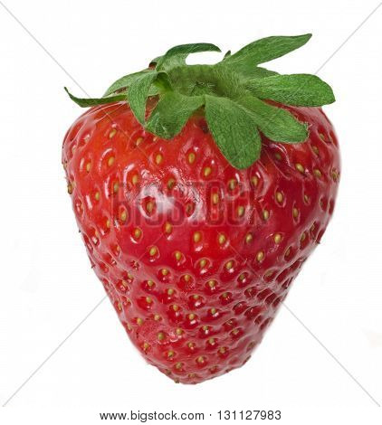 One berry of strawberry on a white background