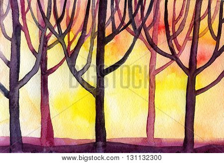 Watercolor sunset forest trees branched a lot of the background