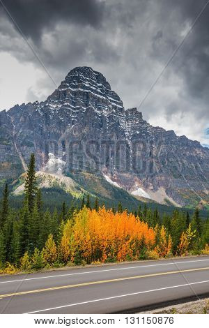 Canadian Rockies, Banff National Park in the autumn. Bright orange bush beside the road. Majestic mountains and glaciers on the background of cloudy sky