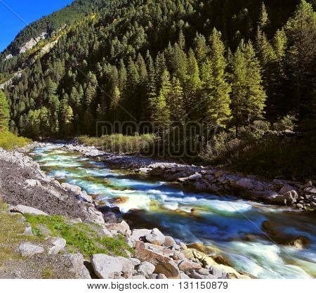 Pastoral in the Alpine mountain valley in Austria. Rapid mountain stream of coniferous forests. Cascades of cold water at the source of the famous Krimml waterfalls.