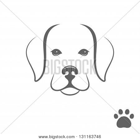 Labrador dog. Little puppy with paw print