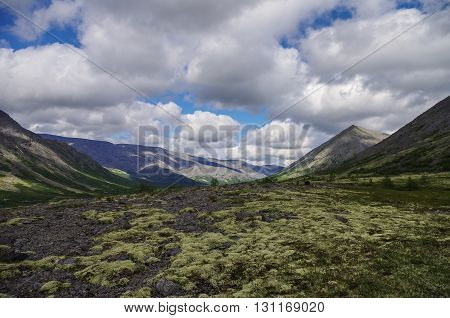 Mountain Tundra With Mosses And Rocks Covered With Lichens, Hibiny Mountains Above The Arctic Circle