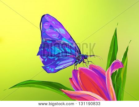 The butterfly on the flower and green background. Retro design graphic element. This is illustration ideal for a mascot and tattoo or T-shirt graphic. Stock illustration