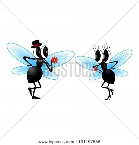 flies on a white background.Illustration, vector graphics