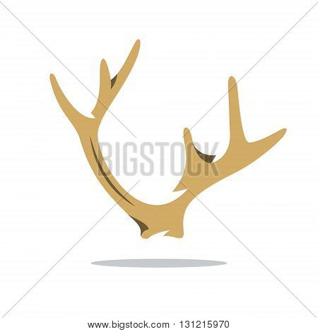 Ornate outgrowth deer head isolated on white background