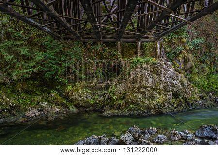 Koksilah River flowing underneath the Kinsol Trestle near Shawnigan Lake, British Columbia Canada