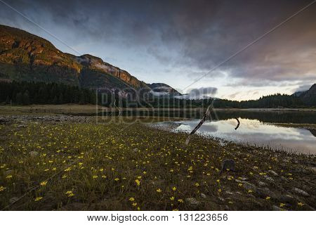 Buttle Lake Strathcona Park on Vancouver Island British Columbia