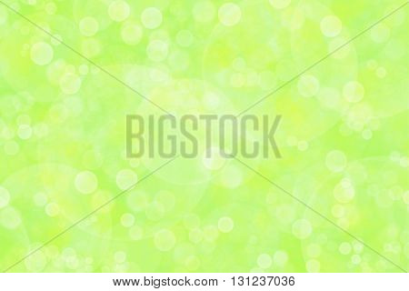 natural white green background with colorful bokeh.