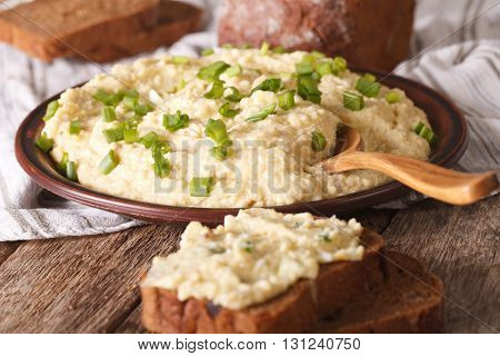 Jewish Cuisine: Pate Of Herring - Forshmak Close-up. Horizontal