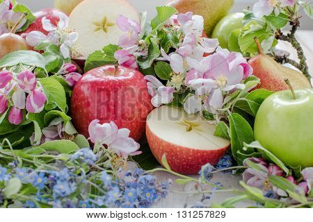 Apple and pears in spring composition with flowers