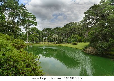 A pond in the garden of Mepkin Abbey reflects the beauty and serenity of the garden as well as home to alligators. Mepkin Abbey was established in 1949 on the site of the historic Mepkin Plantation located on the Cooper River, South Carolina.