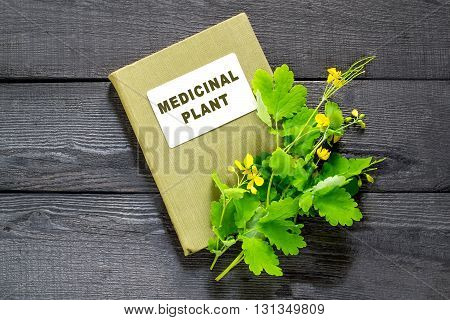 Medicinal plant celandine and herbalist handbook on the old wooden table. Widely used in the treatment of skin diseases