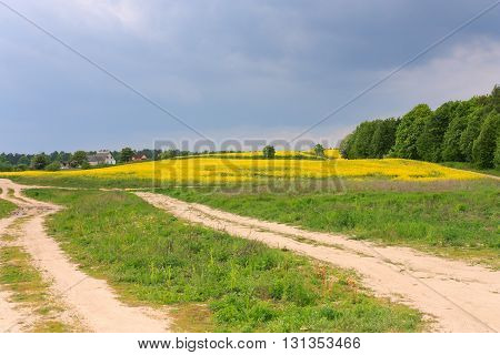 Rural road through a field of rapeseed and stormy clouds landscape