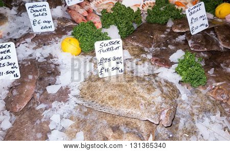 Turbot and other fish on display in fish market