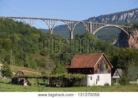 Home and arched Tara Bridge over green Tara Canyon. Zabljak Montenegro.