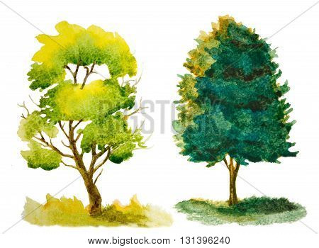 set of watercolor trees isolated on white
