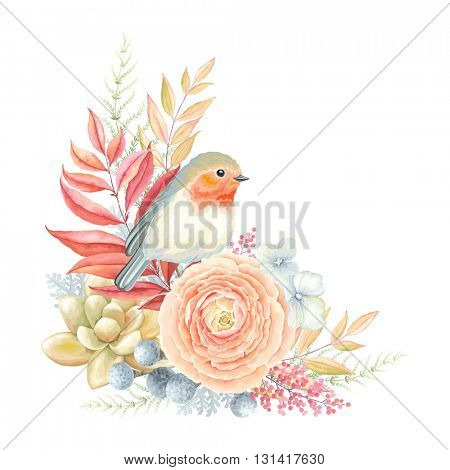 Romantic decoration with bird Robin, Ranunculus, Succulent plant and leaves. Vector illustration in vintage style.