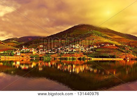 Vineyards in the Valley of the River Douro at Sunset