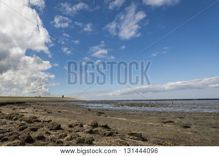 Coastline of the Waddensea at Friesland with mud flats and protection poles and dikes. In the background the church of Wierum.