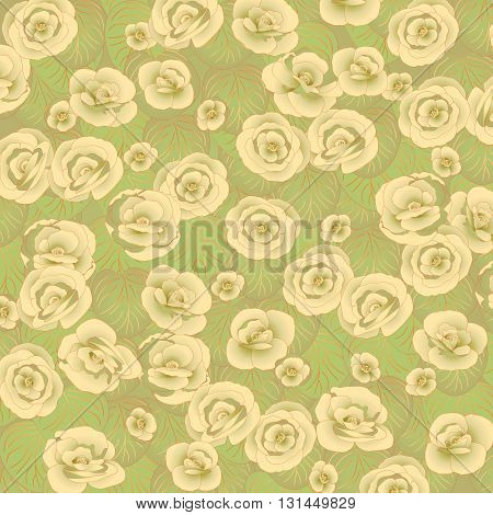Floral green background with white flowers and leaves