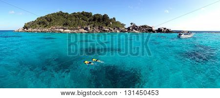 Couple snorkeling in crystal water at similan island Andaman sea, Phuket Thailand