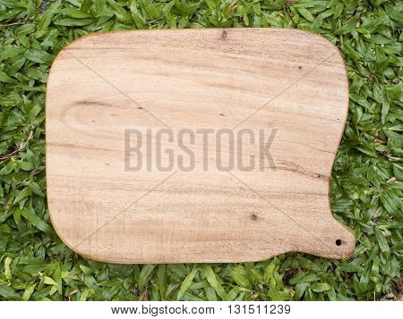 Wooden trencher chopping block on grass. Top view.