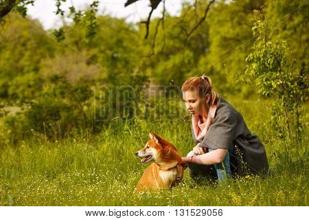 Girl petting dogs Shiba Inu in Spring Park. Walking with a pet. Pedigree dog. Dog walking.