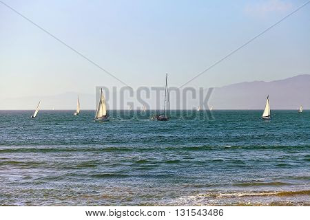 Sailboats back to the Marina Del Rey in California USA