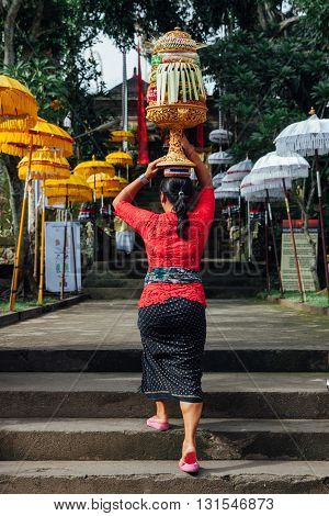 UBUD INDONESIA - MARCH 02: Balinese woman in traditional clothes carrying ceremonial offerings on her head during Balinese New Year or Nyepi Day celebrations on March 03 2016 in Ubud Bali.