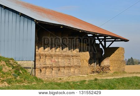 Fleury la Foret France - march 15 2016 : a shed in a field