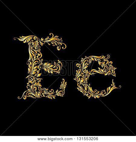 Richly decorated letter 'e' in upper and lower case on black background.