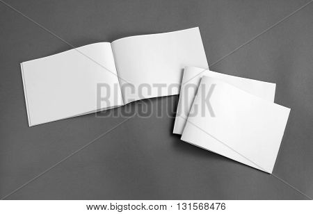 Blank Catalog, Brochure, Magazines, Book Mock Up.