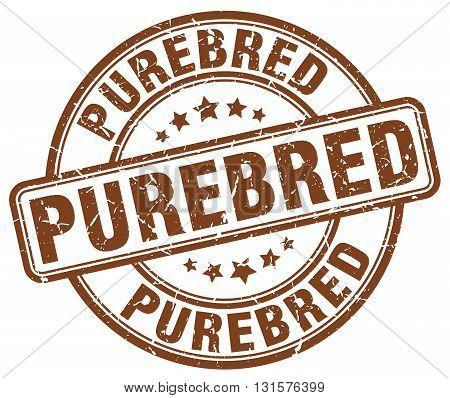 purebred brown grunge round vintage rubber stamp.purebred stamp.purebred round stamp.purebred grunge stamp.purebred.purebred vintage stamp.